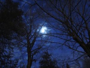 summer dusk winter moon