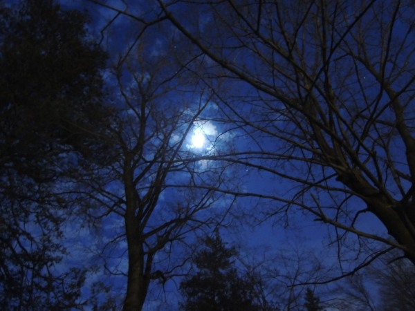 summer dusk winter moon